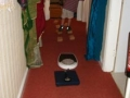 bathroom-scales-1