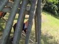 woodside-28