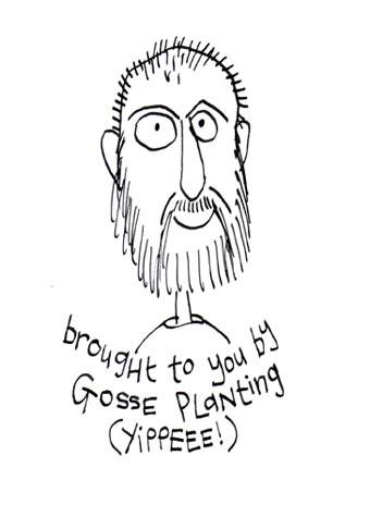 Gosse-Plantingweb