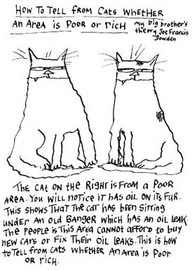 cartoon_cats-web