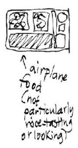 plane_food